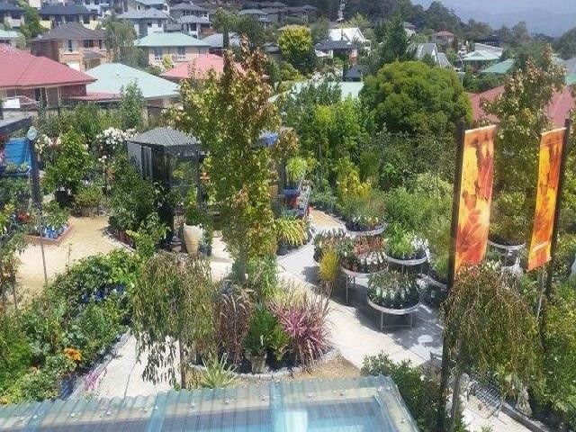 Award Winning Tasmanian Howrah Nursery in Hobart $150,000+sav