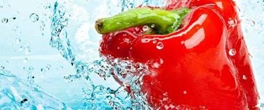 Wholesale Fresh Produce Distribution Business - PRICED TO SELLQUICKLY! - MBB