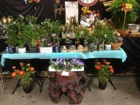 Homewares-Gifts-Home Decor Business For Sale - Thriving Large Market Stalls