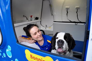 Easy Mobile Dog Grooming opp with established Blue Wheelers  Wash Clip & Groom
