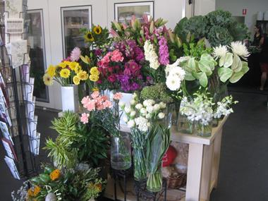 i-Blossom:  Florist and Gifts.  Maroochydore