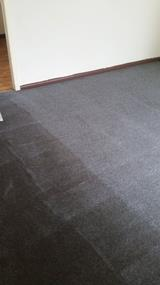 Carpet Cleaning Business