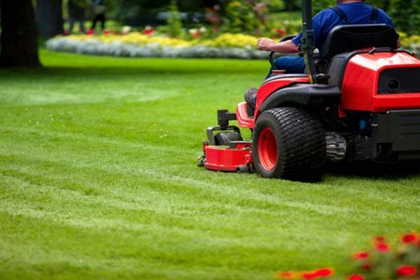Large Land Area Mowing & Slashing Specialist, Service Business
