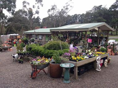 Nursery Garden Centre Business for Sale Yarra Ranges