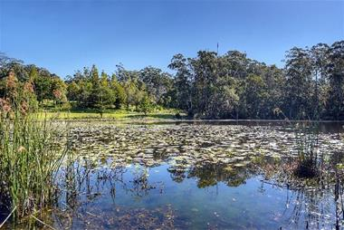 Serene Paradise – Rural business situated on an amazing property - Freehold