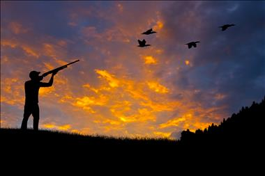 Hunting & Shooting Supplies - Whitsundays