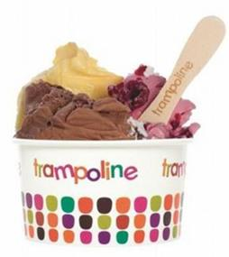 Franchised Trampoline Icecream Shop in Melbourne's East - Ref: 14014