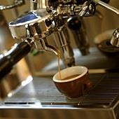 Espresso Bar City Fringe REF:AF746