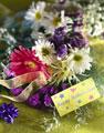 Florist Nursery - Gold Coast