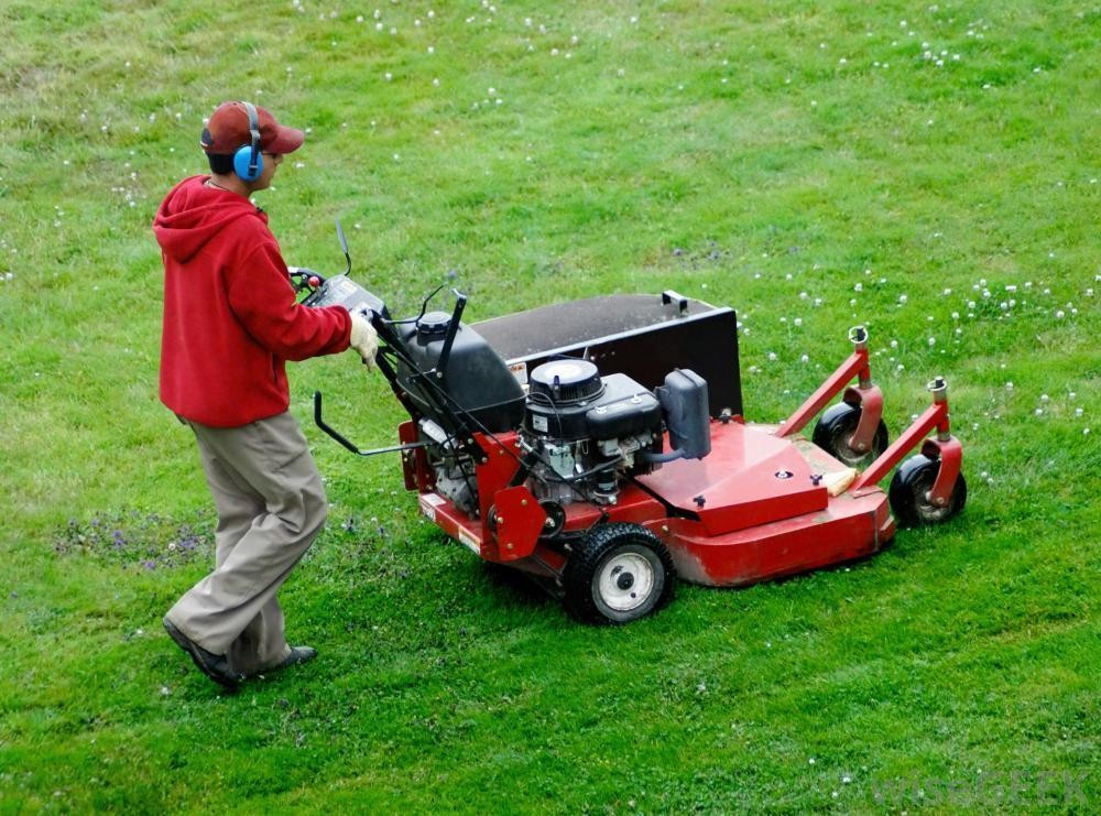 Lawn Mowing and Maintenance Business - Gold Coast
