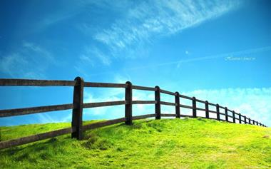 rural-fencing-business-0