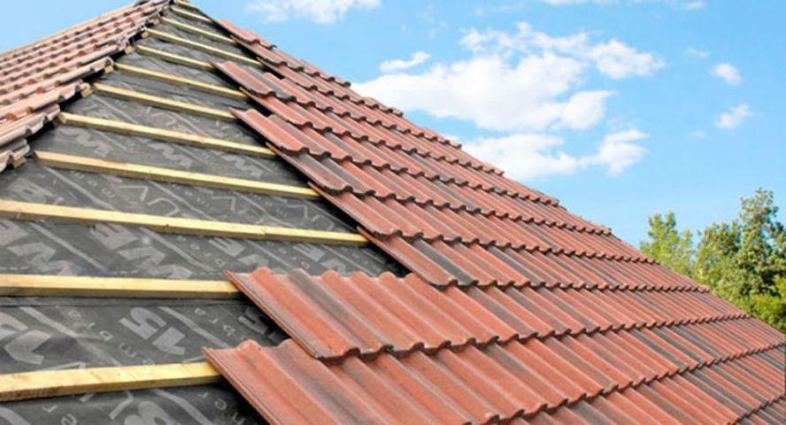 Established Roof Restoration & Repair Business (AM)