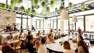 WATERLOO/ALEXANDRIA – CONTEMPORARY CAFÉ - FOR SALE