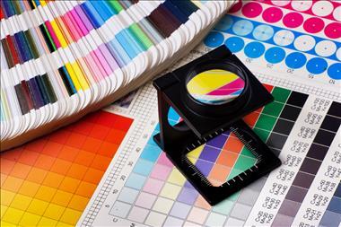 Print Design Website Business| Well Established Award Winning Franchise