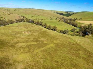 callington-quarry-mine-tenement-121ha-300-acres-approx-2