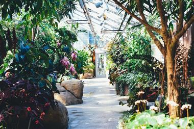 Garden Makeover, Landscaping & Maintenance Business