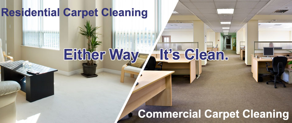 carpet-tile-cleaning-and-pest-control-for-sale-ipswich-2