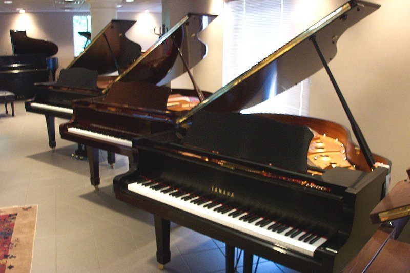PIANO SALE/PIANO SCHOOL -- BOX HILL -- #4246204