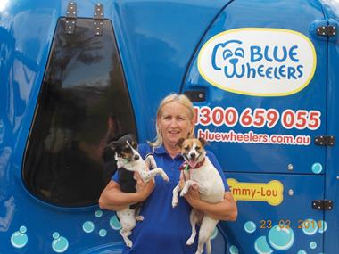 Mobile Dog Grooming opp with established Blue Wheelers  Wash Clip & Groom