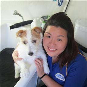 Dog Lover? Join Aussie's #1 Choice in Mobile Dog Grooming. Earn up to $2000 p/w