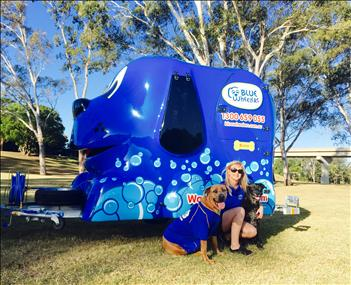 dog-lover-join-aussies-1-choice-in-mobile-dog-grooming-earn-up-to-2000-p-w-2