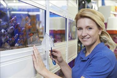 retail-aquarium-north-qld-business-for-sale-3023-1