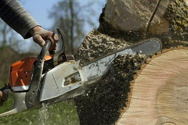 Tree Services Western Suburbs Brisbane - Business for Sale #3064