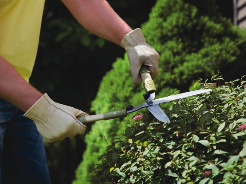 Brisbane Commercial Garden/Body Corporate Maintenance Business For Sale Ref #356