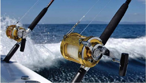 Online Based Fishing Equipment & Accessories Import, Wholesale/Distribution