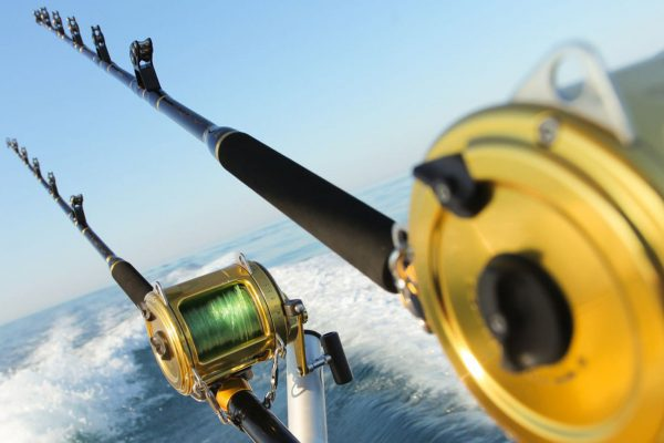Online Home Based Fishing, Tackle Products, Equipment & Accessories W'Sale/Dist