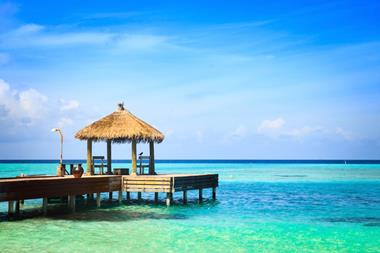 Gazebo & Bali Hut Business makes you up to $3k+ p.w working the hrs you like