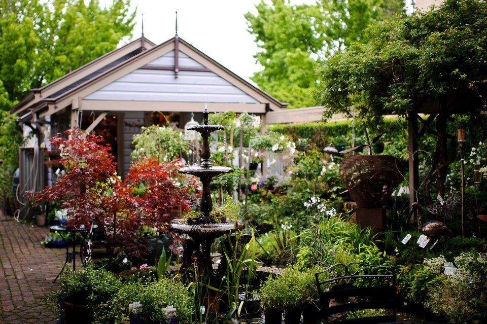 Nursery, Café & Gift shop in NSW