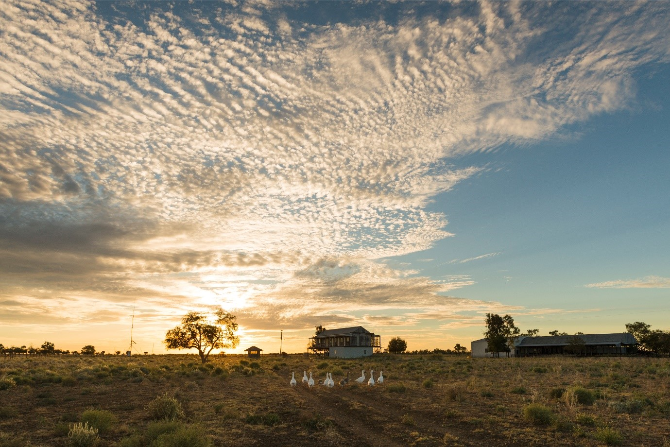 Freehold Independent Service Station And Caravan Park For Sale in Queensland