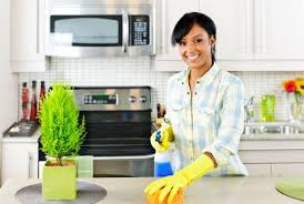 Work from Home Cleaning Business in Sydney