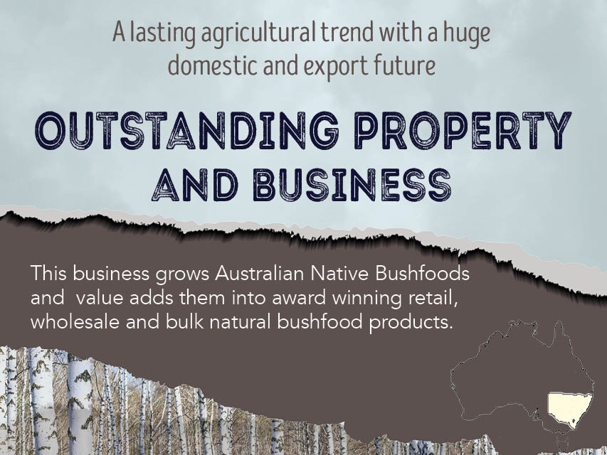 N8/088  Horticultural Natural Bush Foods Business and Land -