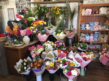 Urgent Sell! Boutique Florist - Award Winning