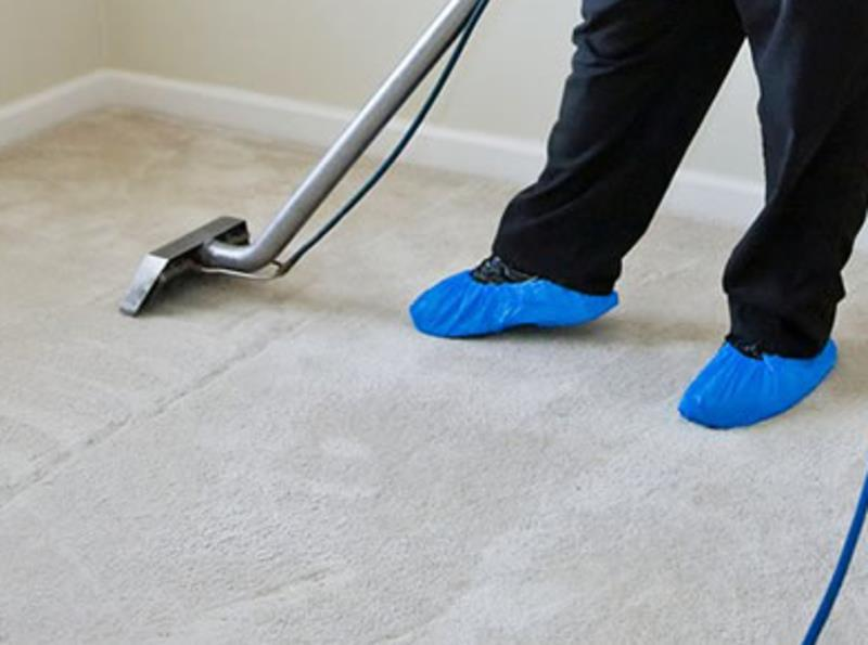18136-carpet-cleaning-business-profitable-and-well-established-2
