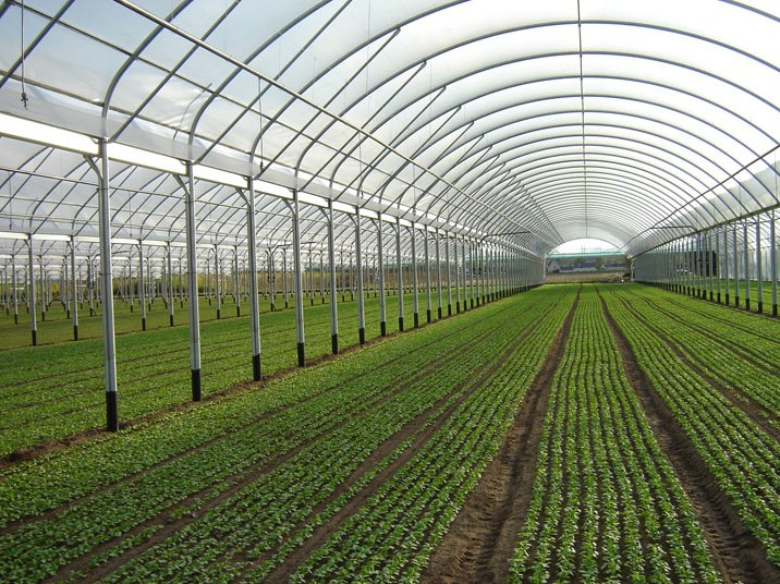 Agriculture: Greenhouses, Shade Structures, Horticulture