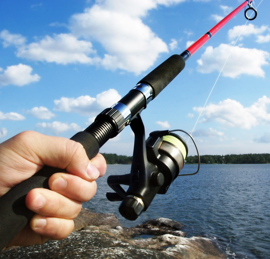 Online Fishing Supplies Business