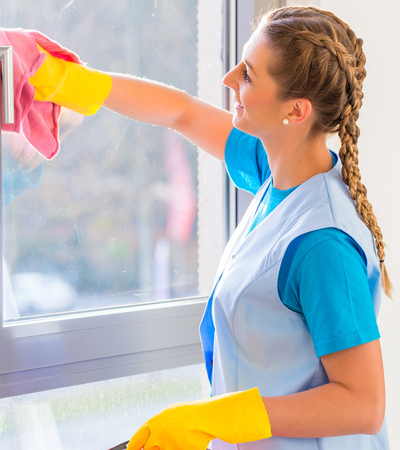 Online Cleaning Supplies Business