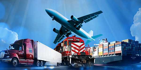 International Import/Export & Courier Business