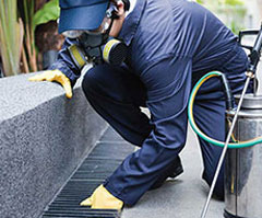 Building and Pest Inspections, stop breaking your back and earn a great income