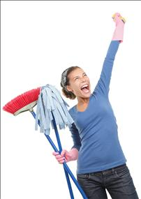 Domestic and Commercial Cleaning Business
