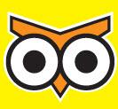 NightOwl Convenience Stores Logo