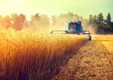 LEADING GLOBAL BRAND AGRICULTURAL EQUIPMENT DEALERSHIP