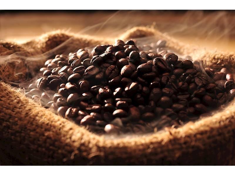 Organic Coffee Roasting, Inner City Cafe!