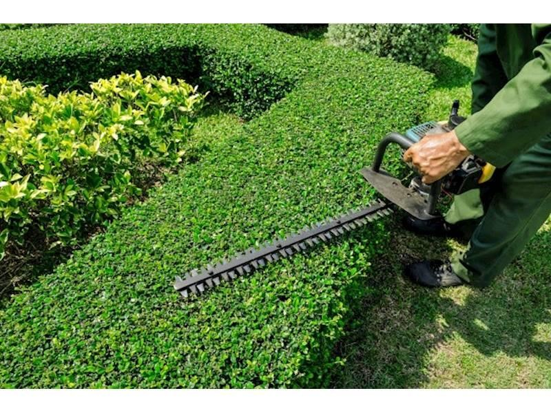 Property Maintenance Business with Secure Contracts