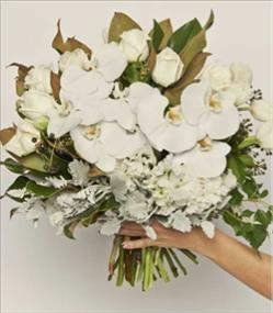 Exceptionally well presented on-line boutique florist with ideal Sydney location