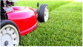 Established Garden Maintenance Business For Sale!!! Eastern Suburbs