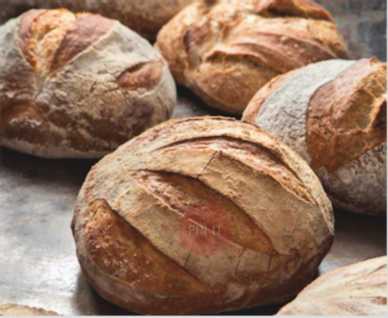 Organic Artisan Bakery Caf Chain and Wholesaler in South Coast and Highlands